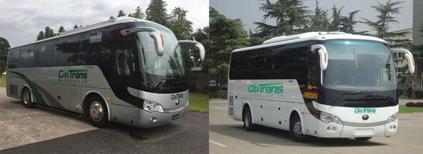Comments for Cititrans Bus Transit
